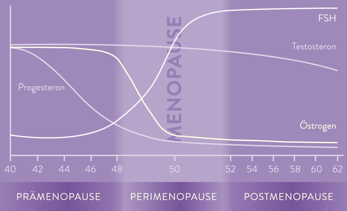 mp_graph_dreiphasen_neu_pfade_rgb